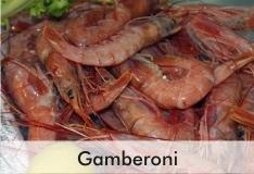 gamberoni_2