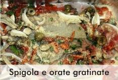 spigole_orate_gratinate