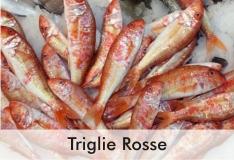 triglie_rosse_0